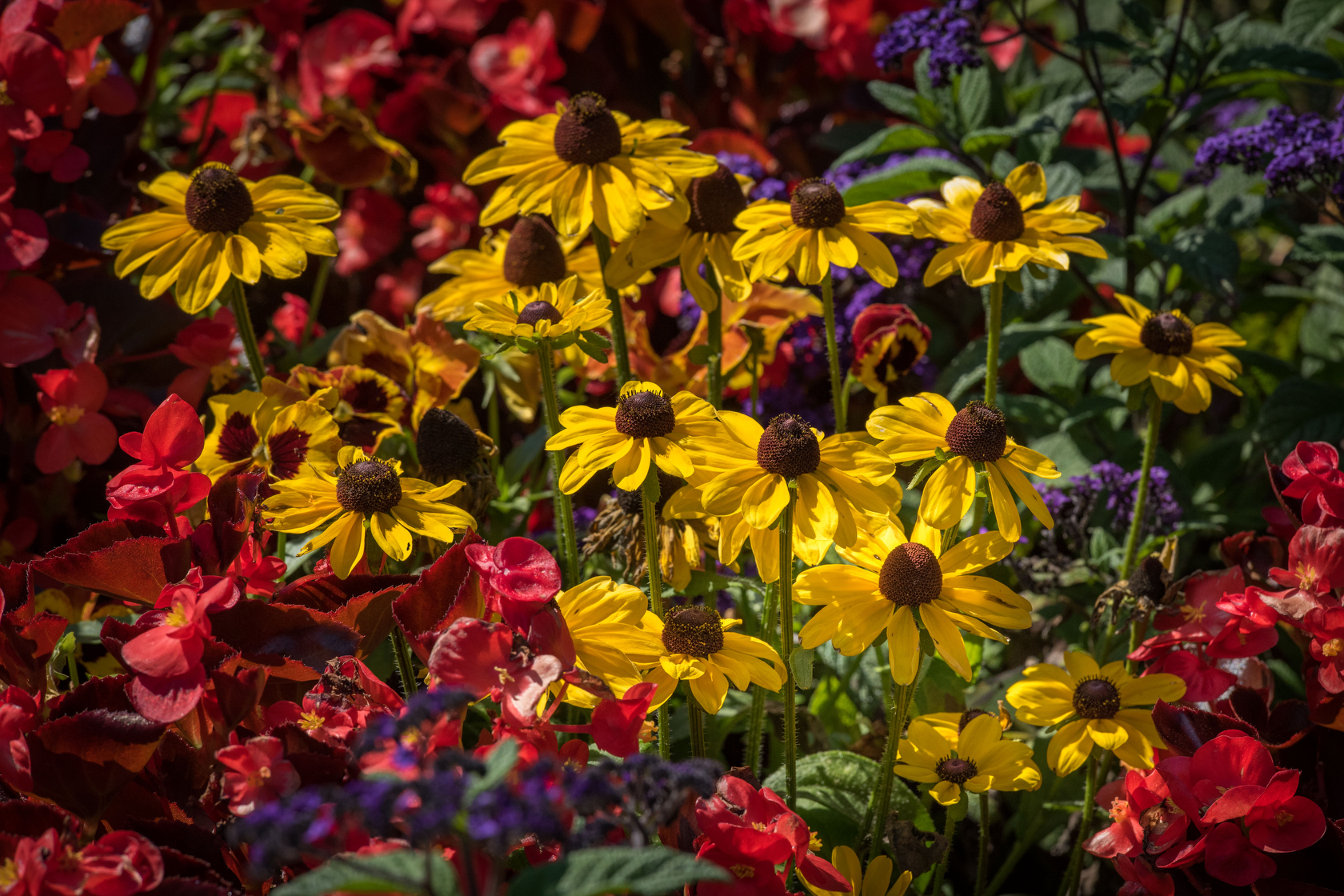Butchart Gardens – Randall Light Photography